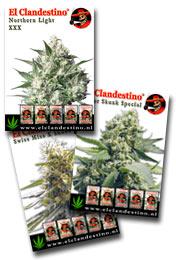 El Clandestino Posters